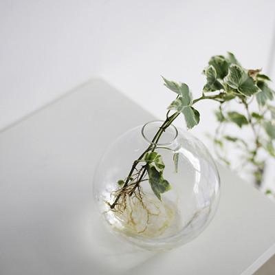 Glass Flask Vase - L